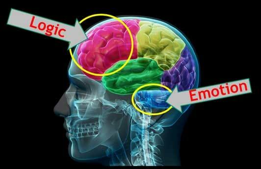 طراحی تبلیغات - تبلیغات بر پایه احساسات کارایی