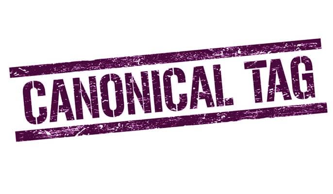 کنونیکال canonical چیست؟ - چگونه میتوان URL های کنونیکال را مشخص کرد؟