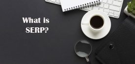 سرپ SERP چیست ؟
