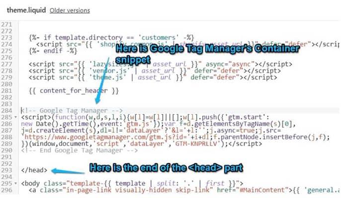 گوگل تگ منیجر چیست - کد کانتینر گوگل تگ منیجر