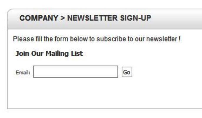 لیست ایمیل - نمونه یک لید مگنت بیکیفیت